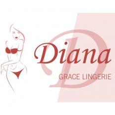 Стать дилером Diana Grace Llingerie