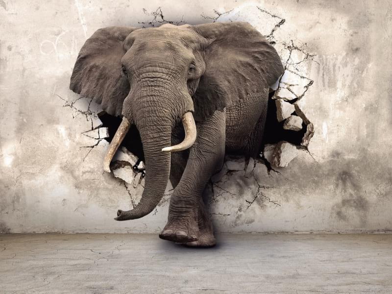 Стать дилером Слон